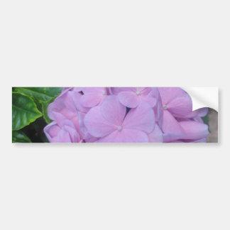 Flor frecuencia intermedia 405 pegatina de parachoque