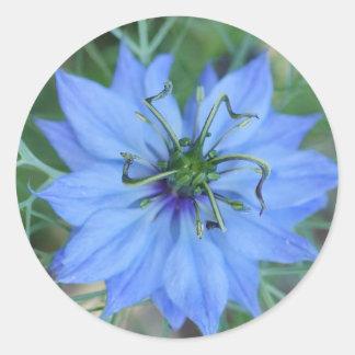 Flor frecuencia intermedia 536 pegatina redonda