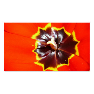 Flor frecuencia intermedia 586 plantilla de tarjeta personal