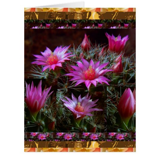 Flor fresca de los cactus del CACTUS: Demostración Felicitacion