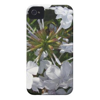 Flor Case-Mate iPhone 4 Funda