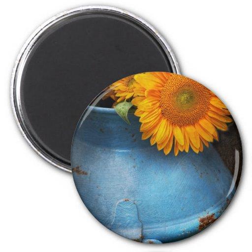 Flor - girasol - poca sol azul iman de nevera