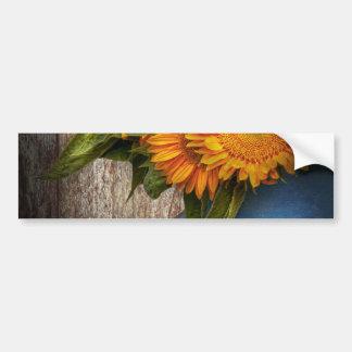 Flor - girasol - sol del país pegatina para auto