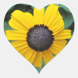 Flor Gloriosa del jardín de la margarita Pegatina Corazón