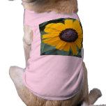 Flor Gloriosa del jardín de la margarita Camiseta De Perro