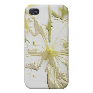 Flor grabada en relieve de la calabaza iPhone 4 carcasas
