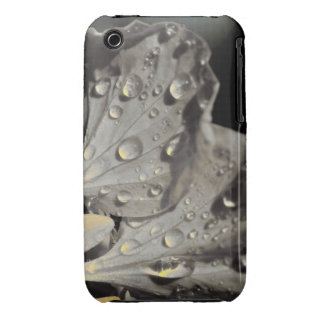 Flor gris y amarilla iPhone 3 Case-Mate carcasa