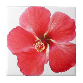 Flor hawaiana roja del hibisco azulejo cuadrado pequeño