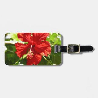 Flor hawaiana roja del hibisco etiqueta para maleta