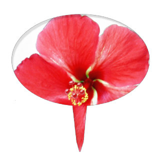 Flor hawaiana roja del hibisco palillos de tarta