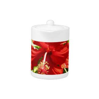 Flor hawaiana roja del hibisco