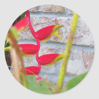 Flor Heliconia Rostrata de la pinza de langosta Etiquetas Redondas