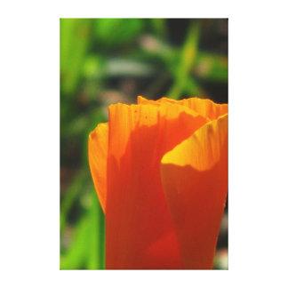 Flor hermosa del amarillo anaranjado impresion en lona