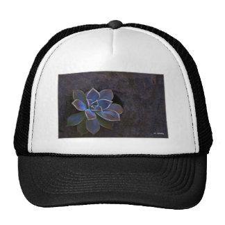 Flor hermosa del cactus del añil gorras de camionero