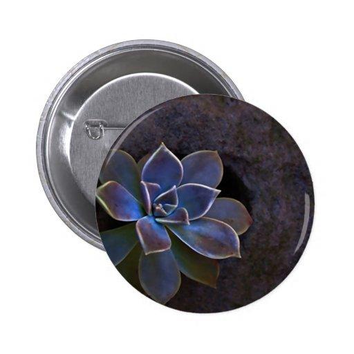 Flor hermosa del cactus del añil pin