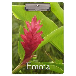 Flor I del jengibre rojo