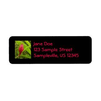 Flor I del jengibre rojo Etiqueta De Remite