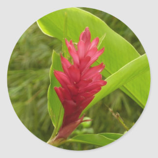 Flor I del jengibre rojo Pegatina Redonda