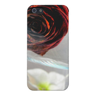 Flor II de Glassed iPhone 5 Fundas