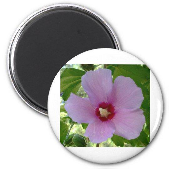 flor imán redondo 5 cm