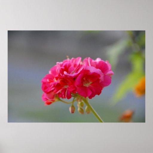flor impresiones