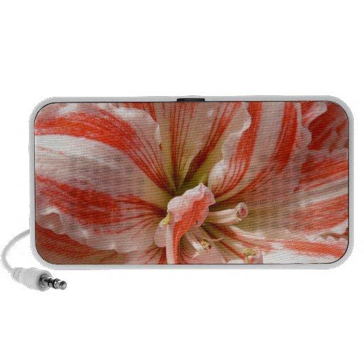 flor iPod altavoz