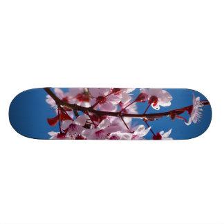 Flor japonés del cerezo monopatines personalizados