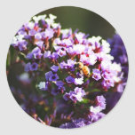 flor lavendar etiquetas redondas