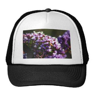 flor lavendar gorras de camionero