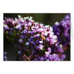flor lavendar tarjeta
