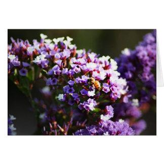 flor lavendar tarjeta de felicitación