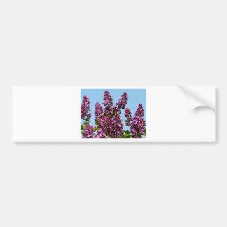 flor, lila púrpura pegatina para auto