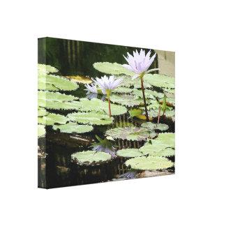 Flor Lilypads floral de Waterlily del jardín del Impresión En Lienzo