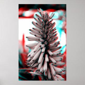 flor loca 3D Poster