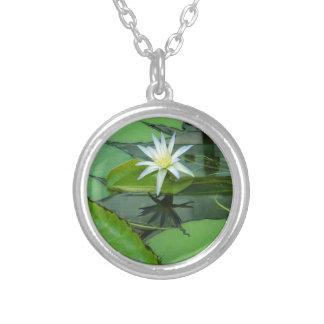 Flor Lotus del lirio en la floración Collar Plateado
