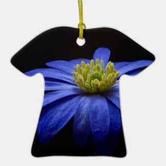 Flor macra azul ornatos