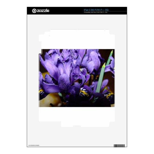Flor macra azul iPad 2 calcomanía