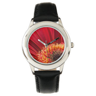 Flor macra roja de la margarita del Gerbera Reloj De Mano
