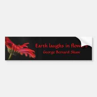 Flor macra roja del Gerbera Pegatina De Parachoque