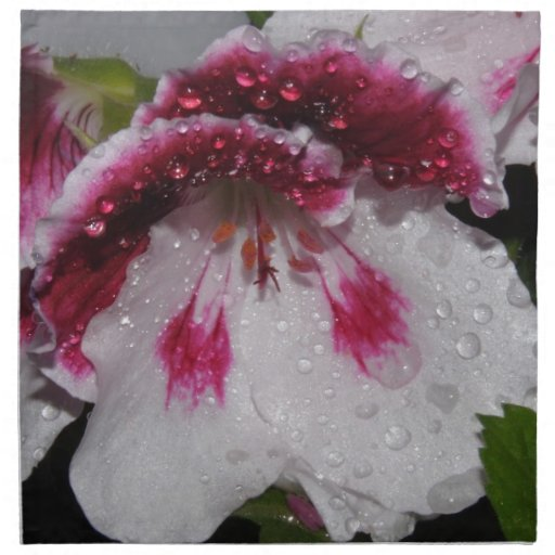 Flor macra servilletas