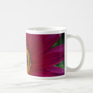 Flor magenta taza