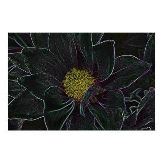 Flor mágica fotos