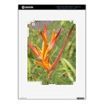Flor magnífica de Heliconia de la mandarina y del  Pegatina Skin Para iPad 3