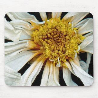 Flor - margarita - sol borracho alfombrillas de ratón