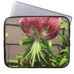 Flor marrón verde del jardín del lirio manga portátil