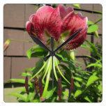 Flor marrón verde del jardín del lirio reloj