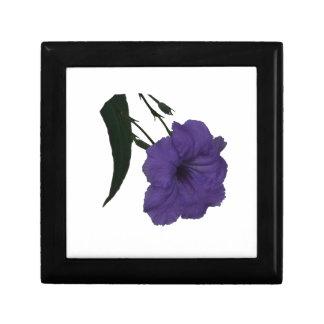 Flor mexicana del recorte de la petunia cajas de recuerdo