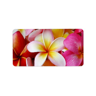 Flor mezclada blanca amarilla rosada del Plumeria Etiquetas De Dirección