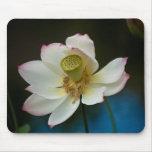 Flor Mousepad de Lotus Tapetes De Ratón