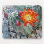 Flor Mousepad del cactus de la taza de clarete Alfombrilla De Ratón